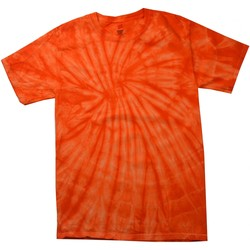 Vêtements Enfant T-shirts manches courtes Colortone Spider Orange