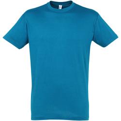Vêtements Homme T-shirts manches courtes Sols Regent Bleu clair