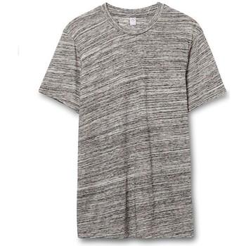 Vêtements Homme T-shirts manches courtes Alternative Apparel Jersey Gris