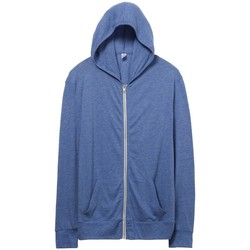 Vêtements Homme Sweats Alternative Apparel Jersey Bleu clair