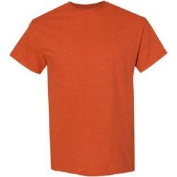 Vêtements Homme T-shirts manches courtes Gildan Heavy Orange brûlée