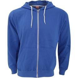 Vêtements Sweats Fdm TZ001 Bleu roi