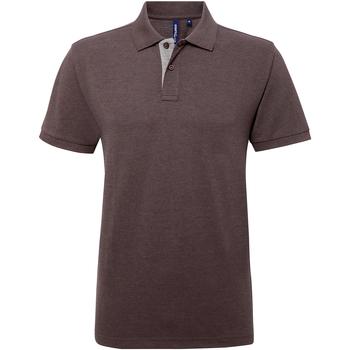 Vêtements Homme Polos manches courtes Asquith & Fox AQ012 Gris/Gris clair