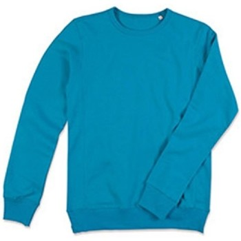 Vêtements Homme Sweats Stedman Active Bleu