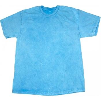 Vêtements Homme T-shirts manches courtes Colortone Mineral Bleu pâle