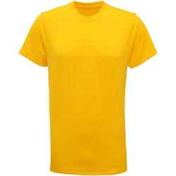 Vêtements Homme T-shirts manches courtes Tridri TR010 Jaune soleil