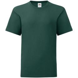 Vêtements Garçon T-shirts manches courtes Fruit Of The Loom Iconic Vert foncé