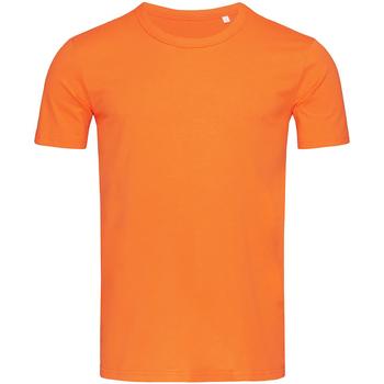 Vêtements Homme T-shirts manches courtes Stedman Stars Morgan Orange