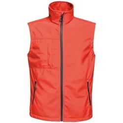 Vêtements Homme Gilets / Cardigans Regatta TRA848 Rouge / noir