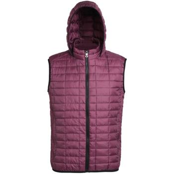 Vêtements Femme Doudounes 2786 Hooded Violet