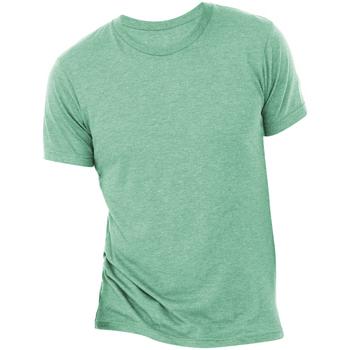 Vêtements Homme T-shirts manches courtes Bella + Canvas Triblend Vert mer