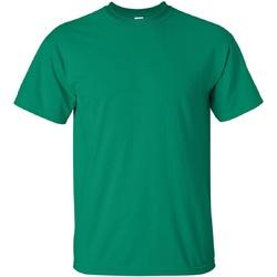 Vêtements Homme T-shirts manches courtes Gildan Ultra Vert tendre