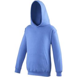 Vêtements Enfant Sweats Awdis Hooded Bleu roi