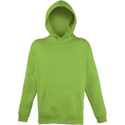 Vêtements Enfant Sweats Awdis Hooded Vert électrique