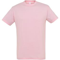 Vêtements Homme T-shirts manches courtes Sols Regent Rose clair