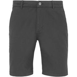 Vêtements Homme Shorts / Bermudas Toutes les chaussures femme Chino Ardoise