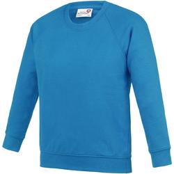 Vêtements Enfant Sweats Awdis Academy Bleu saphir