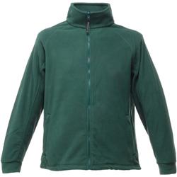 Vêtements Homme Polaires Regatta TRF532 Vert bouteille