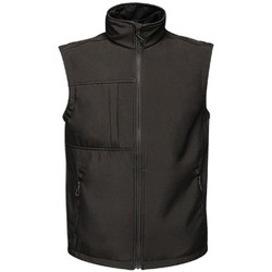 Vêtements Homme Gilets / Cardigans Regatta TRA848 Noir
