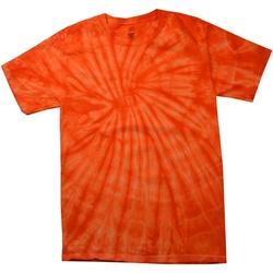 Vêtements Homme T-shirts manches courtes Colortone Tonal Orange