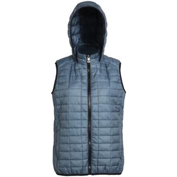 Vêtements Femme Doudounes 2786 Hooded Acier
