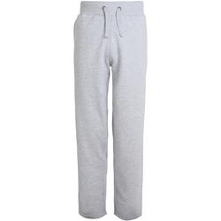 Vêtements Homme Pantalons de survêtement Awdis Campus Gris