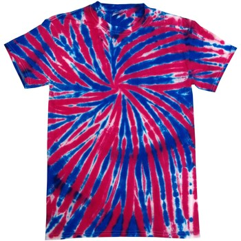 Vêtements Femme T-shirts manches courtes Colortone Rainbow Union Jack