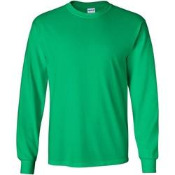 Vêtements Homme T-shirts manches longues Gildan 2400 Vert irlandais
