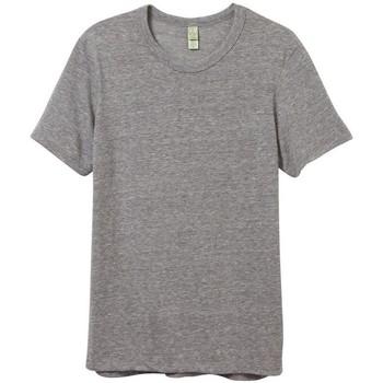 Vêtements Homme T-shirts manches courtes Alternative Apparel Jersey Gris chiné