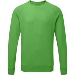 Vêtements Homme Sweats Russell HD Sweatshirt à manches raglan RW5506 Vert marne