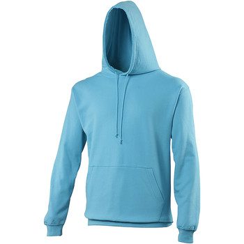 Vêtements Sweats Awdis College Bleu clair