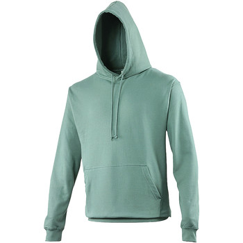Vêtements Sweats Awdis Hooded Vert de gris