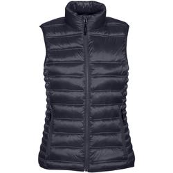 Vêtements Femme Doudounes Stormtech Quilted Bleu marine