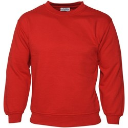 Vêtements Homme Sweats Absolute Apparel Sterling Rouge