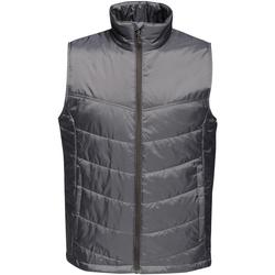 Vêtements Homme Gilets / Cardigans Regatta Insulated Gris