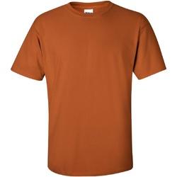 Vêtements Homme T-shirts manches courtes Gildan Ultra Orange Texas