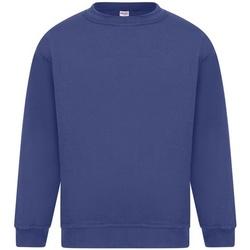 Vêtements Homme Sweats Absolute Apparel Sterling Bleu roi