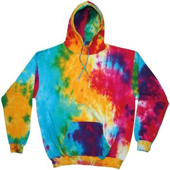 Vêtements Homme Sweats Colortone TD31M Arc-en-ciel multicolore