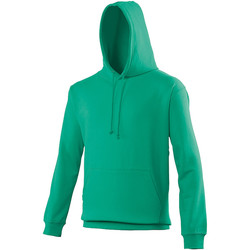 Vêtements Sweats Awdis College Vert bleu
