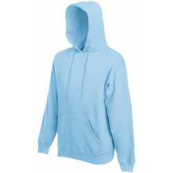 Vêtements Homme Sweats Fruit Of The Loom Hooded Bleu ciel