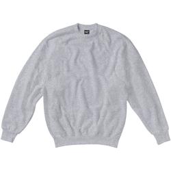 Vêtements Enfant Sweats Sg SG20K Gris clair