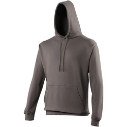 Vêtements Sweats Awdis Hooded Gris