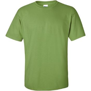 Vêtements Homme T-shirts manches courtes Gildan Ultra Kiwi
