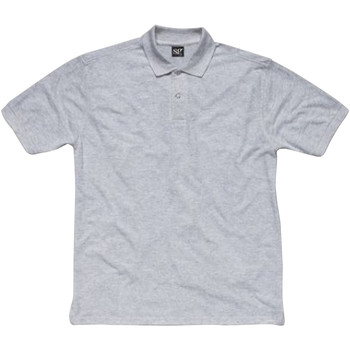 Vêtements Homme Polos manches courtes Sg SG50 Gris clair