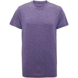 Vêtements Homme T-shirts manches courtes Tridri TR010 Violet chiné