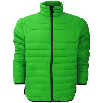 Vêtements Homme Doudounes Stormtech Altitude Vert/Noir