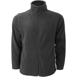 Vêtements Homme Polaires Russell Jerzees Colours Veste polaire à fermeture zippée BC575 Gris