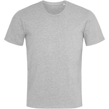 Vêtements Homme T-shirts manches courtes Stedman  Gris chiné