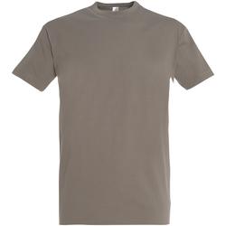 Vêtements Homme T-shirts manches courtes Sols Imperial Gris clair