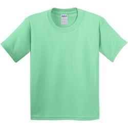 Vêtements Enfant T-shirts manches courtes Gildan 5000B Vert menthe